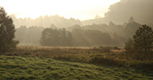Svítání -podzim 2011